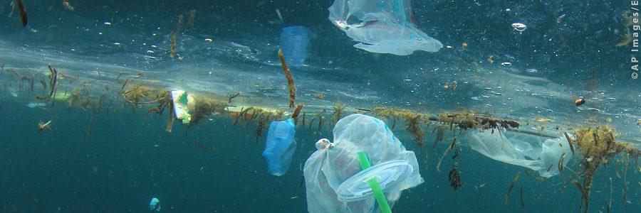 El Parlamento Europeo aprueba la prohibición de plásticos de un solo uso