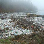 Los delitos ambientales ya son el cuarto negocio criminal del planeta