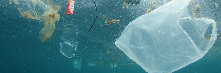 El Parlamento Europeo respalda la prohibición de los plásticos de un solo uso