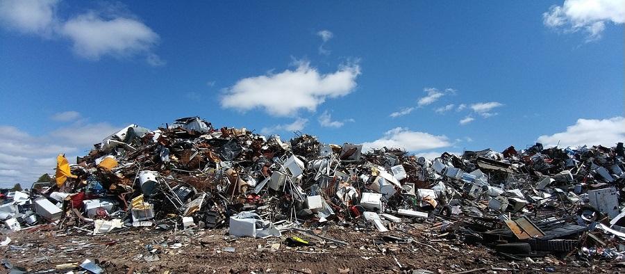 Delitos ambientales, un negocio criminal con bajo riesgo