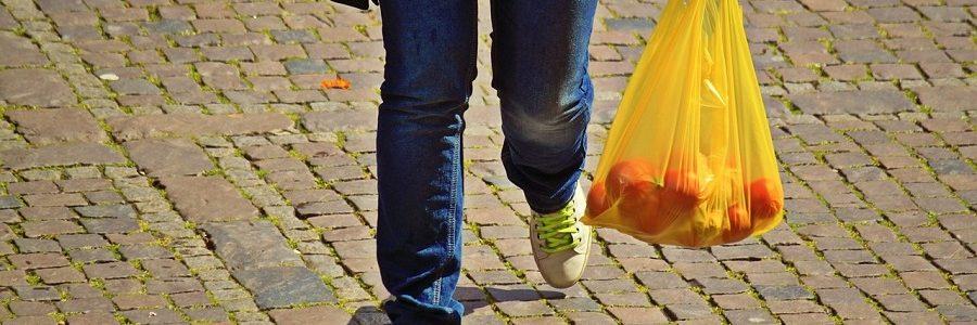 El Tribunal Constitucional de Chile respalda la prohibición de la entrega de bolsas de plástico en los comercios