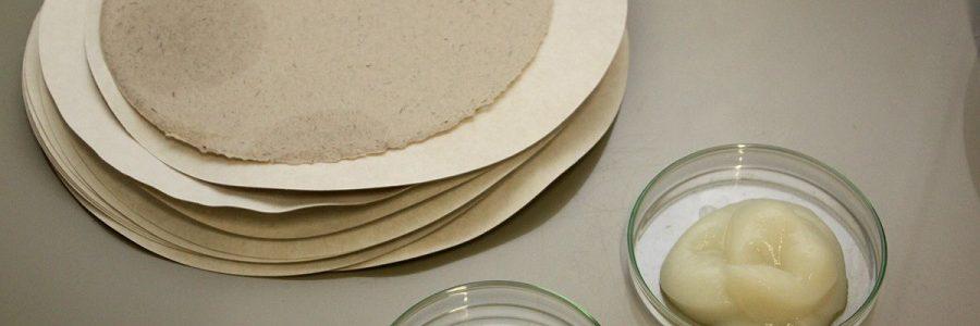 El proyecto SINSOST investiga nuevos materiales biodegradables para envases
