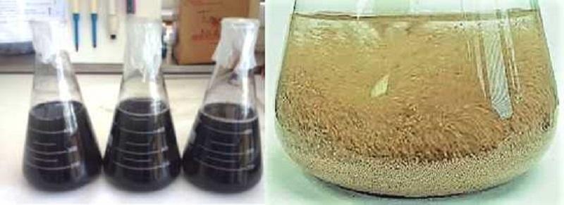 Investigadores de la ULE comparan sistemas de adsorcion de fármacos en aguas residuales