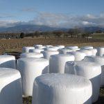 Proyecto para la recogida de plásticos agrarios en la provincia de Palencia