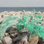 Investigadores de la Universidad de Alicante estudian la degradabilidad de los bioplásticos en el medio ambiente