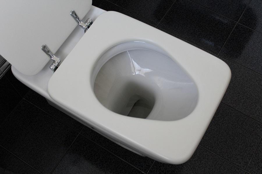 una cuarta parte del agua potable se va por el inodoro
