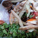 La recogida selectiva de biorresiduos en la región de Murcia permitiría recuperar 133.000 toneladas anuales