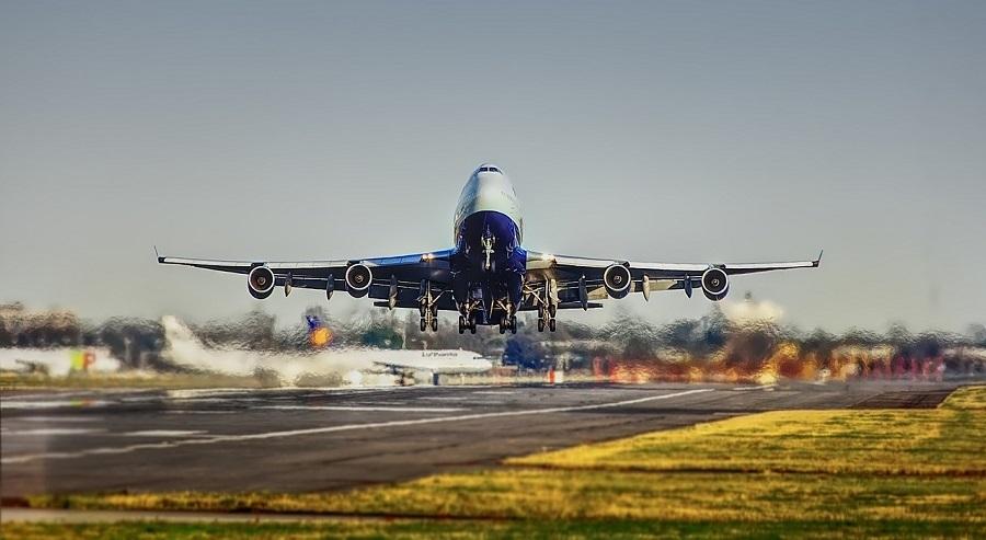 Nuevo combustible para aviones a partir de residuos vegetales