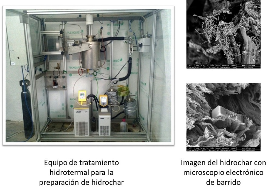 Proponen aprovechar energéticamente residuos de macroalgas