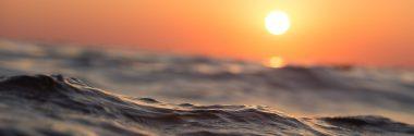 Los océanos absorben el 31% del CO2 generado por la actividad humana