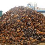De la responsabilidad delegada a la responsabilidad compartida: el futuro de la gestión de residuos