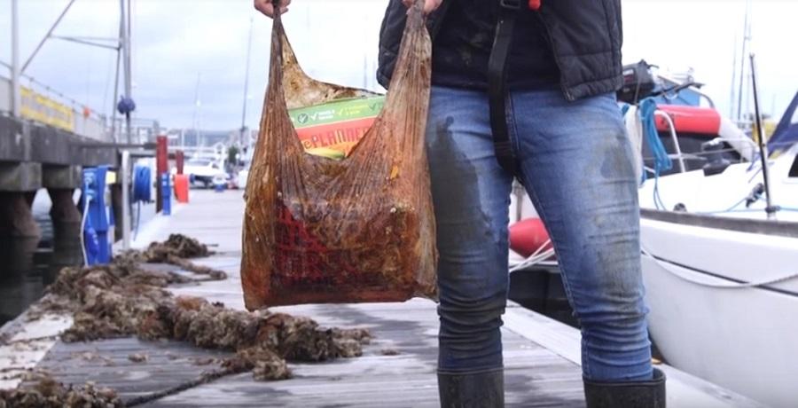 Las bolsas biodegradables aguantan en el medio ambiente más tiempo de lo que creemos