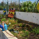 Compostaje en los colegios de La Palma