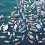 Avanza la coordinación internacional entre estados a fin de combatir la masiva presencia de residuos plásticos en los mares y océanos