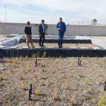 La EDAR de Los Alcázares (Murcia) utiliza restos de poda para tratar las aguas residuales