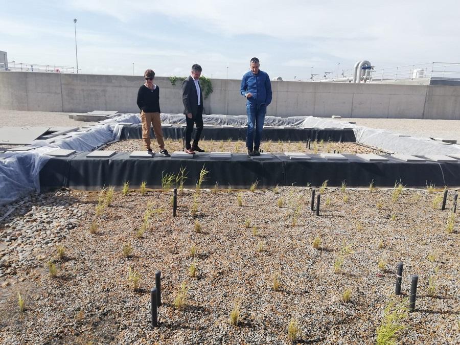 La EDAR de Los Alcázares acoge un piloto para desnitrificar aguas residuales con restos de poda