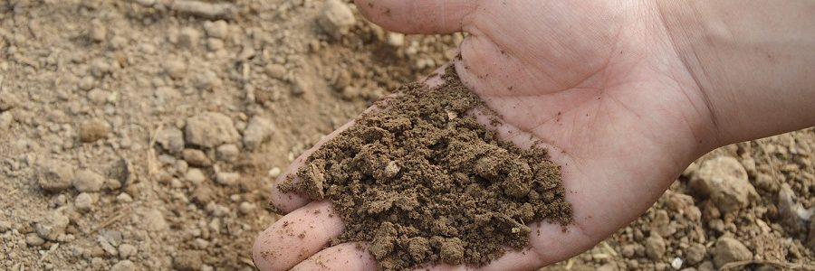 La UE quiere fomentar el uso de fertilizantes obtenidos a partir de residuos