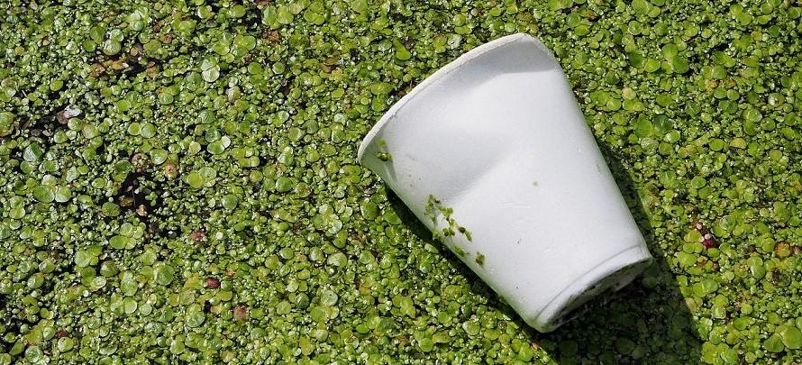 Jornada de Tecnalia en Madrid sobre reciclaje y biodegradabilidad de los residuos plásticos