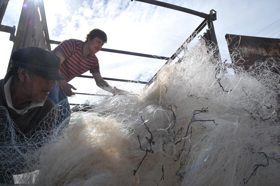 El proyecto Net100-Net+Positiva recoge 100 toneladas de redes de pesca en las costas de Chile