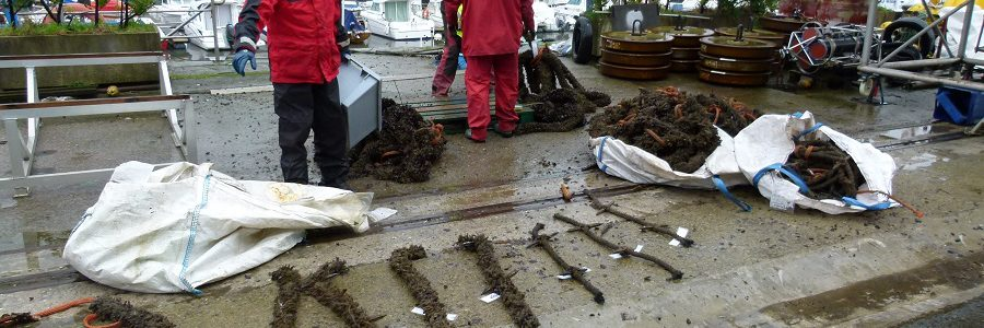 El proyecto BLUENET recuperará residuos marinos para convertirlos en nuevo material de pesca