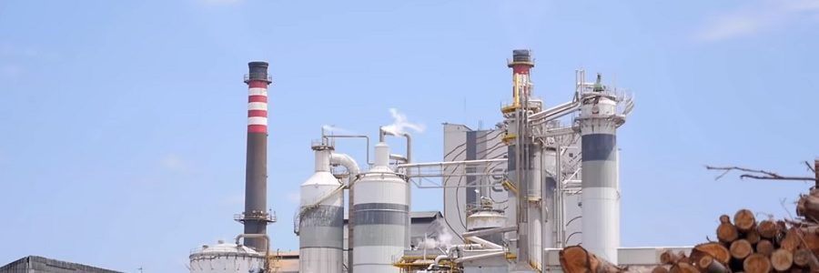 Ence Pontevedra recibe el certificado Residuo Cero de AENOR
