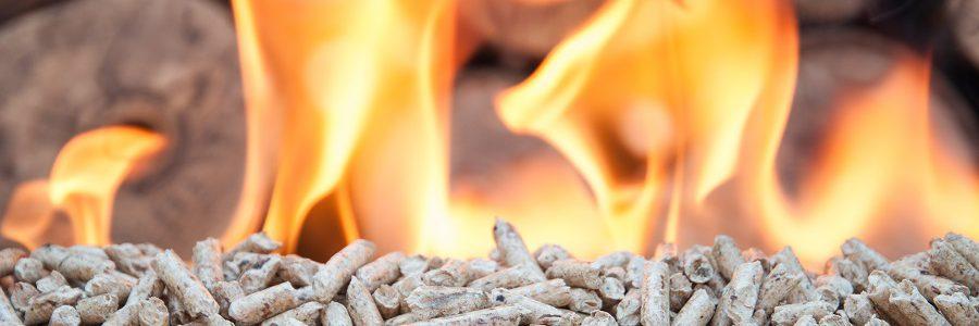 El Ente Vasco de la Energía, premiado por su fomento del uso de la biomasa
