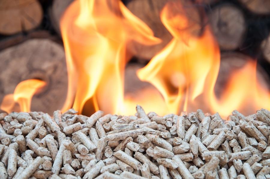 El EVE recibe un premio de Avebiom por su apoyo a la biomasa