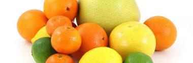 Proponen reciclar las pieles de cítricos como compuestos bioactivos saludables
