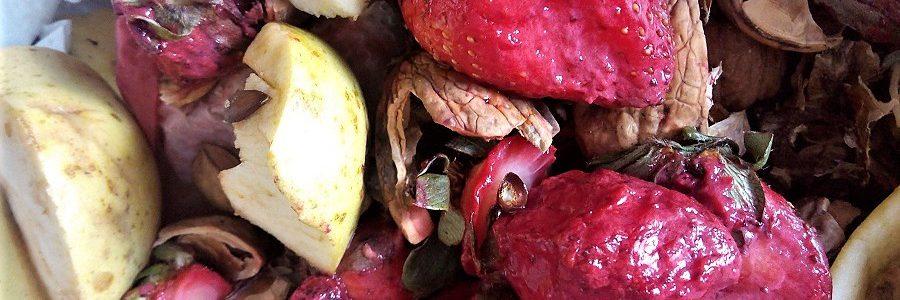 Las consecuencias sociales, nutricionales y ambientales de desperdiciar comida