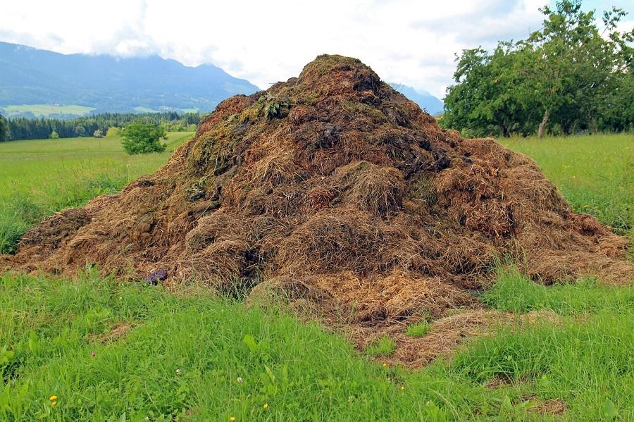 Residuos ganaderos