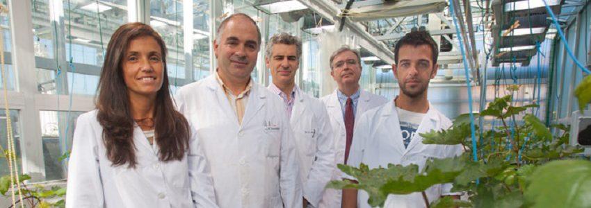 Investigadores de la Universidad de Navarra desarrollan una tecnología para fabricar nuevos fertilizantes a partir de residuos orgánicos