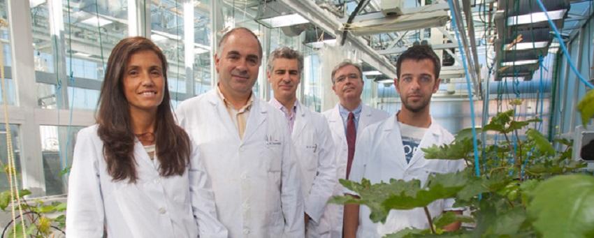 Proyecto Nutryfert: nuevos fertilizantes a partir de residuos orgánicos
