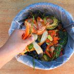25 centros escolares gallegos participarán en un proyecto de compostaje