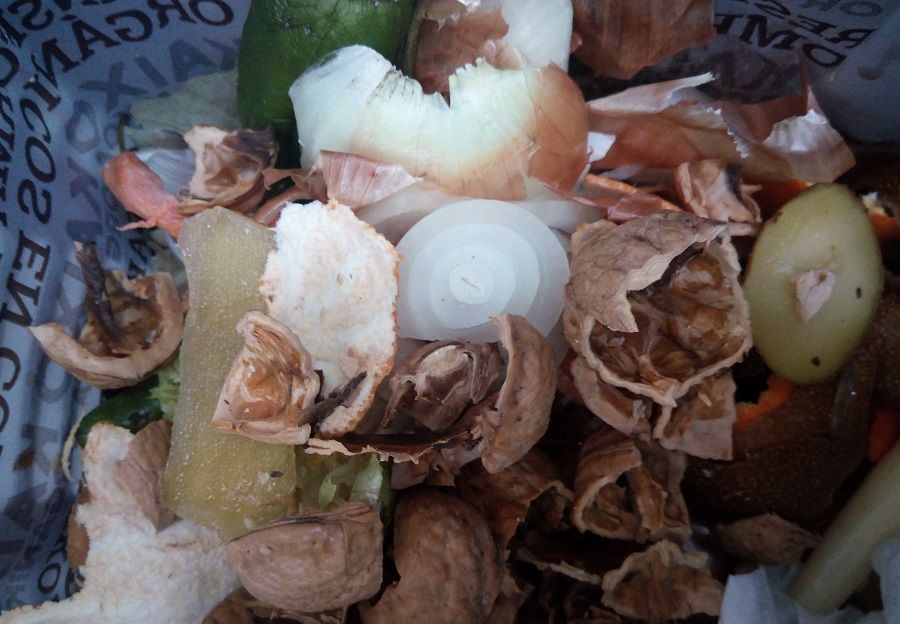 Castellón incorpora a los comedores escolares a la recogida de materia orgánica
