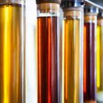 El proyecto Bac-To-Fuel convertirá CO2 en biocombustible