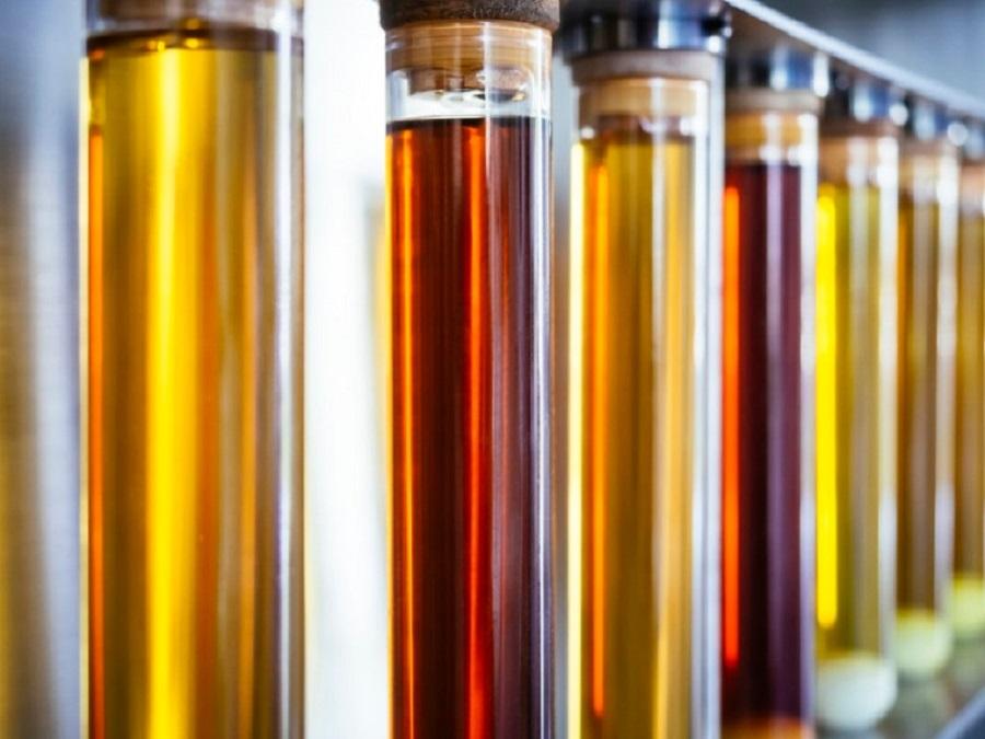 Proyecto para la producción de biocombustible a partir de CO2