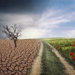 El Pacto Verde Europeo: nuestra nueva estrategia de crecimiento