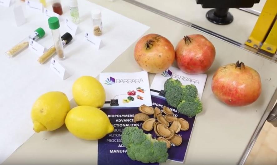 El proyecto Barbara aprovecha residuos agrícolas para fabricar piezas de automoción