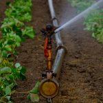 Acuerdo provisional del Consejo de la UE para reutilizar aguas residuales en el sector agrícola