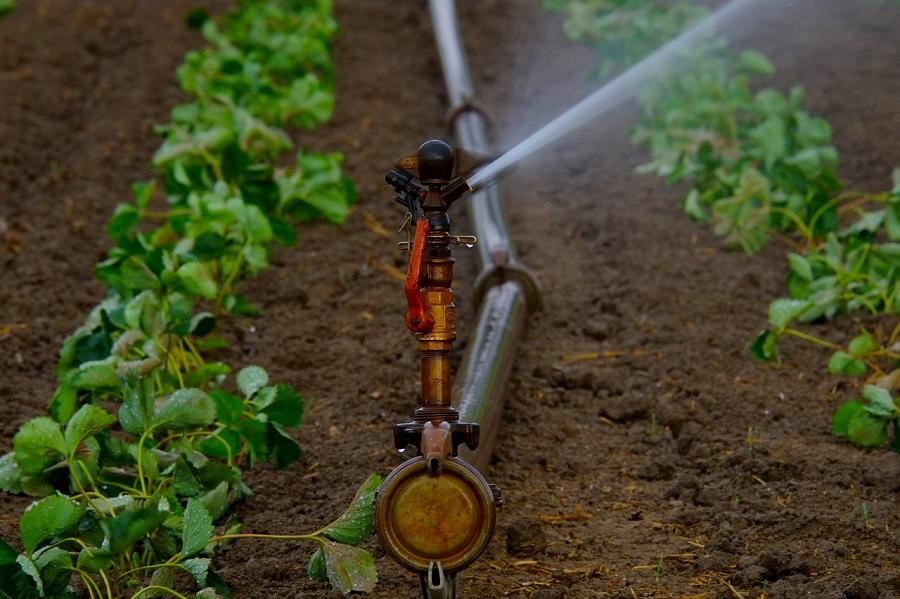 El Consejo de la UE apuesta por el uso de agua regenerada en agricultura