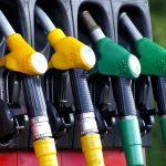 Proponen el uso de bioaceites derivados de residuos como alternativa a los combustibles fósiles