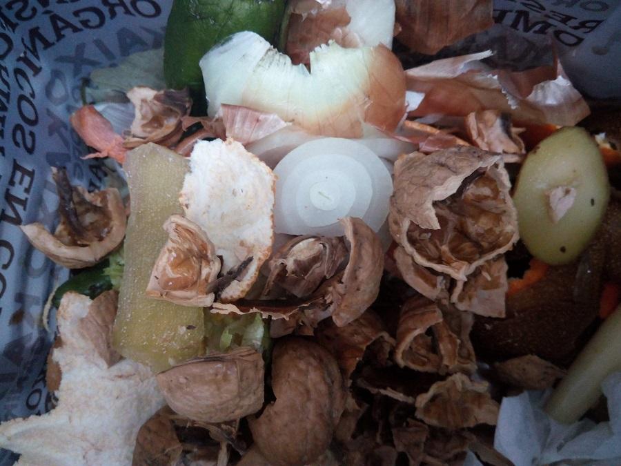 Casi el 40% de los residuos domésticos en Baleares son orgánicos
