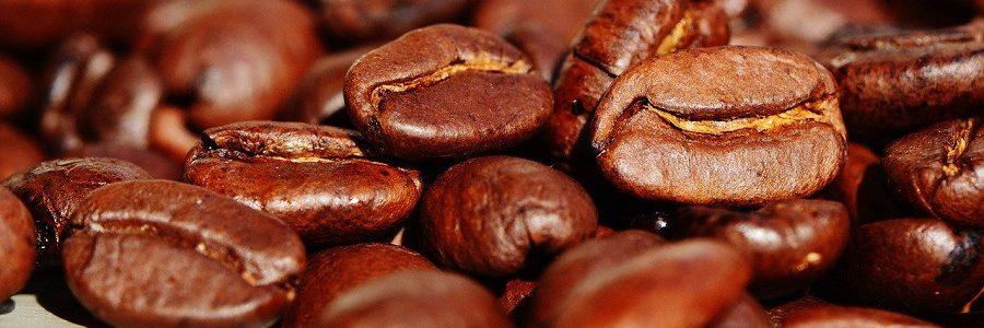 Obtienen antioxidantes para su uso en alimentación y cosmética a partir de residuos de café