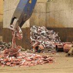 La industria española del reciclaje recuperó 20,2 millones de toneladas de residuos en 2019, un 1,8% más