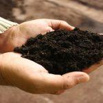 Amigos de la Tierra organiza seis cursos de maestría en compostaje en Galicia y Madrid