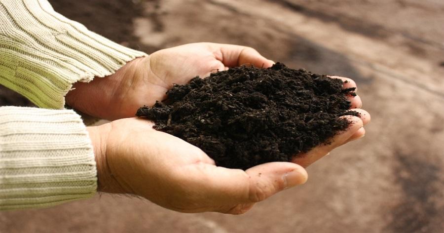 Nuevos cursos de maestría en compostaje organizados por Amigos de la Tierra