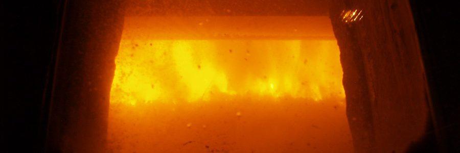 Ecologistas en Acción rechaza la incineración y el vertido como únicos tratamientos para los residuos en contacto con el coronavirus