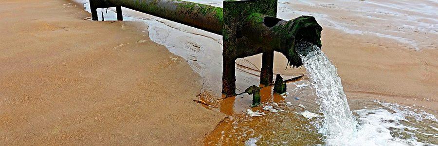 Las personas directamente afectadas por la contaminación del agua por nitratos de origen agrario pueden exigir la adopción de medidas a los Estados miembros