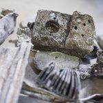 La X-TRACT de TOMRA ya permite obtener zorba de alta calidad con un mínimo contenido en magnesio