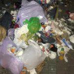 Castellón alerta del riesgo sanitario de dejar las bolsas de basura fuera del contenedor